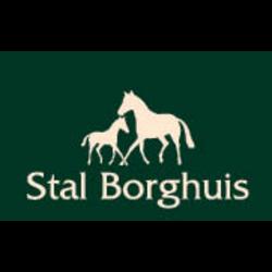 Logo borghuis